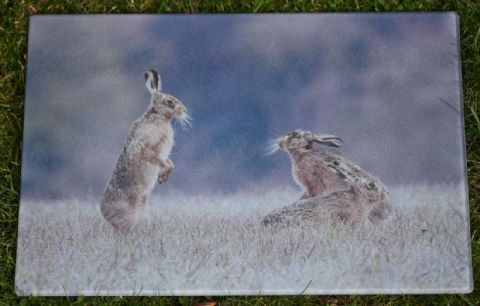 Mad April Hares Glass Chopping Board Large Size Toughened Glass